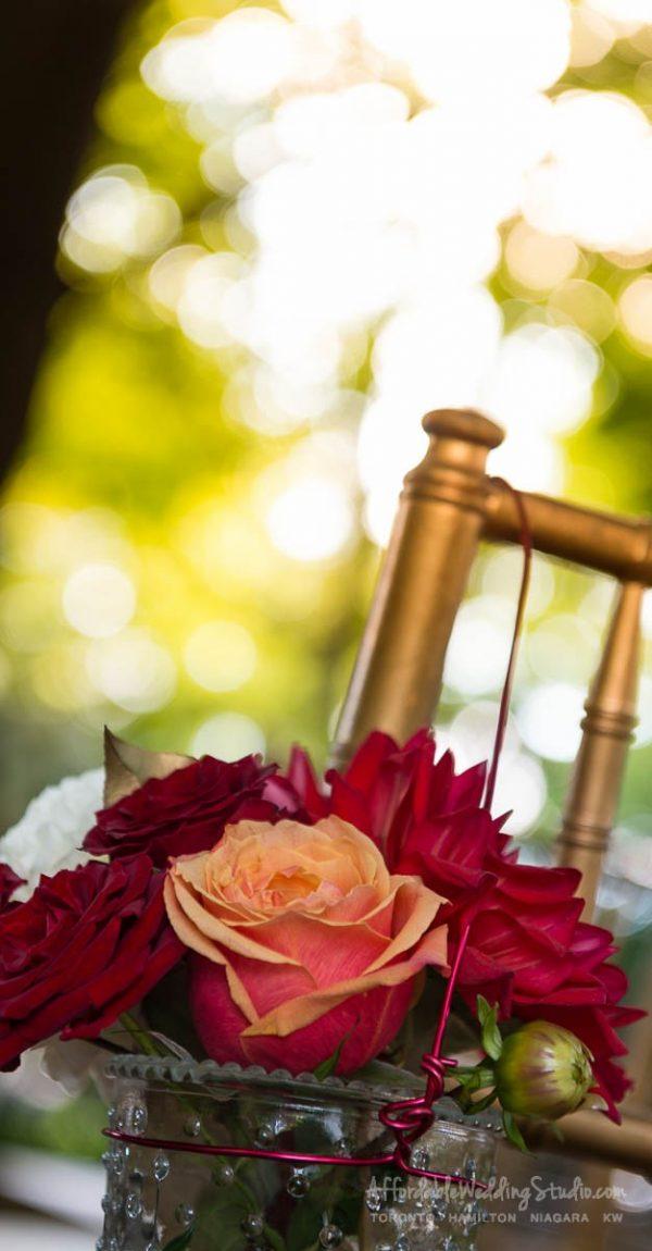 vineyard wedding same sex wedding photography same sex wedding niagara wedding niagara on the lake gay marriage affordable wedding photography